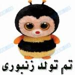 تم تولد زنبوری